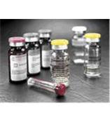 供应升麻素,升麻素苷,类叶升麻苷(麦角甾苷)
