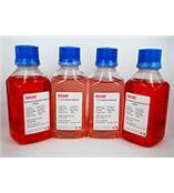 Invitrogen液体培养基,平衡盐,抗生素