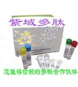 熒光標記多肽
