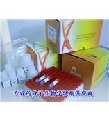 中量、大量全血基因组DNA提取试剂盒