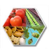 美國Envirologix植物病原體快速檢測試劑盒