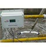 美国InsiteIG在线溶解氧分析仪Online DO Sentry M-2