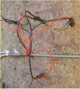 德国Ecomatik植物茎流测量仪SF-L