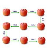 中小型果汁生产线