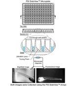 PSI SideView 成像板(观察斑马鱼胚胎)