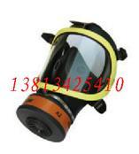 防毒面具/過濾式防毒面具/防毒面罩//防毒全面罩/防毒全面具