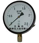 無錫雪浪壓力表Y-50/60/75/100/150系列