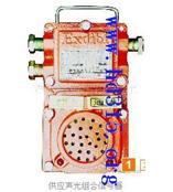 信号发生器(带防爆证) 型号:HNQD- KXH