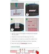 牛奶抗生素快速檢測儀(含儀器和試劑盒96次) 比利時