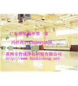 惠州防滑地坪漆 环氧防滑地坪漆工程 惠州工业地坪工程 智成报价