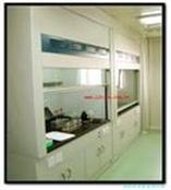北京天嘉实验室家具通风柜药品柜文件柜通风橱厂家定制价格优惠
