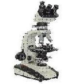 59X单目、双目、三目透射偏光显微镜