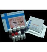 TORCH优生优育诊断试剂盒