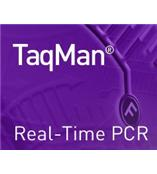 TaqMan® PCR 试剂盒
