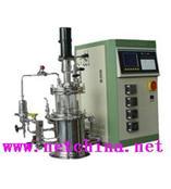 实验室台式发酵罐(在位灭菌) 型号:SSY33-3005B/中国