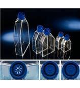 Nunc EasyFlasksTM细胞培养瓶