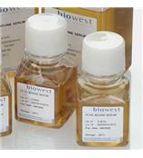 biowest S1520-50 原装正品 FBS (Fetal Bovine Serum), 10 x 50 ml,现货促销