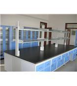陕西西安安康学校医院实验化验台桌厂家报价价格
