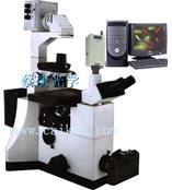 荧光显微镜DFM-70C