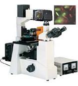 數碼熒光顯微鏡DFM-60D