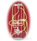 ALC-HP离体心脏灌流装置
