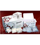 各種規格愛思進(axygen)試劑盒