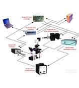 美国C & L Instruments多光谱荧光离子浓度测定系统