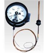 WTQ WTZ压力式温度计