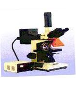 XSP-12CⅠ荧光显微镜