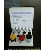 48T ELISA白介素-21(IL-21 ELISA)